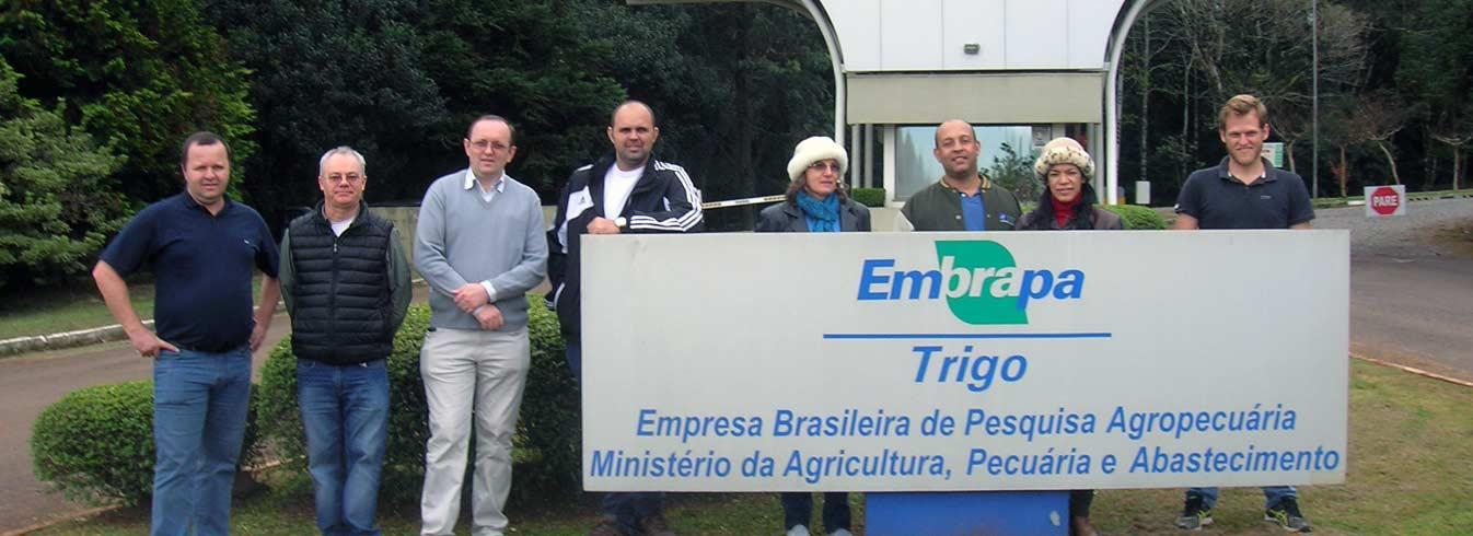 Professores da Unemat participam de evento na Embrapa Trigo sobre a cultura da canola