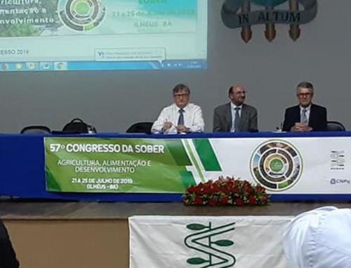 Professoras da Unemat apresentam trabalhos em evento em Ilhéus -Bahia
