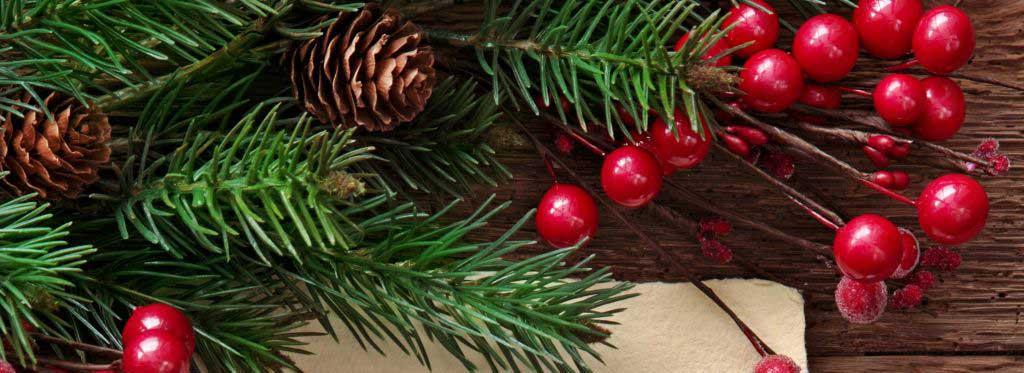 O Campus de Tangará da Serra deseja Feliz Natal e Próspero Ano Novo!